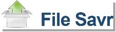 FileSavr-无需注册直接上传的网络硬盘 - 第1张  | 大博辞